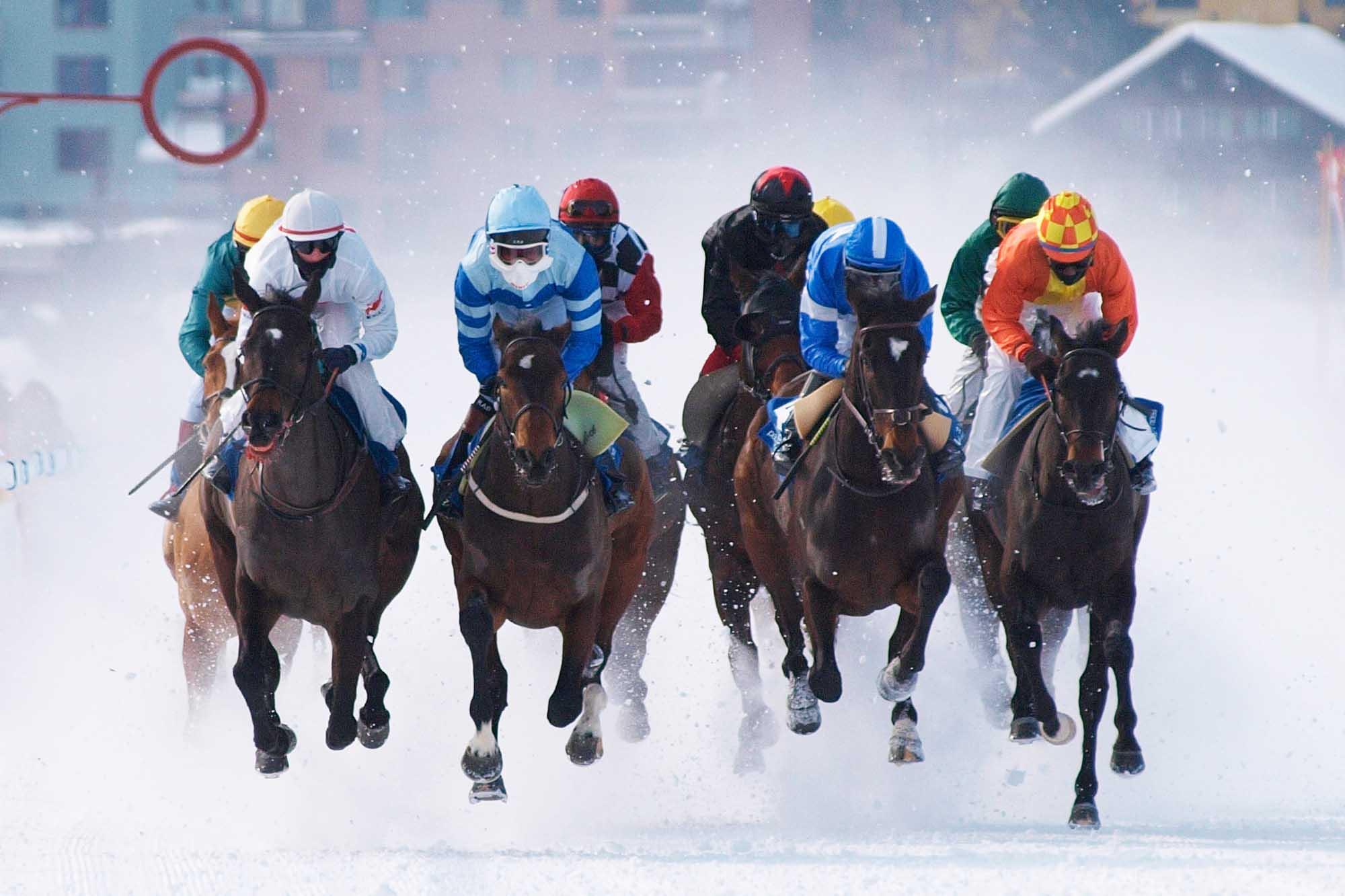 sportfotografie,white turf,st.moritz,pferdesport,eventfotografie,veranstaltungsfotografie,pferderennen,rennsport